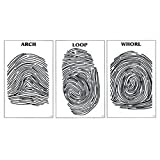 Nasco Fingerprint Posters - Set of 3 - SB42117