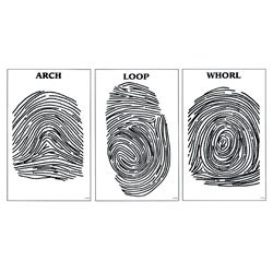 - Nasco Fingerprint Posters - Set of 3 - SB42117