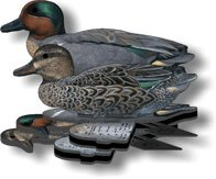 - Green Wing Teal Decoy - 6-Pack Foldable Green Wing Teal for hunting - Land and Water Use - Waterproof, Shot-Proof - Realistic UV Decoy Paints - Includes Anchors, Anchor String and Fudslinger