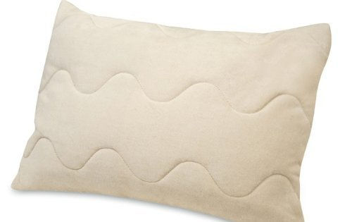 Natura Organic Dream Mate Traditional Pillow Pillow Size=Standard (Dream Mate Pillow)