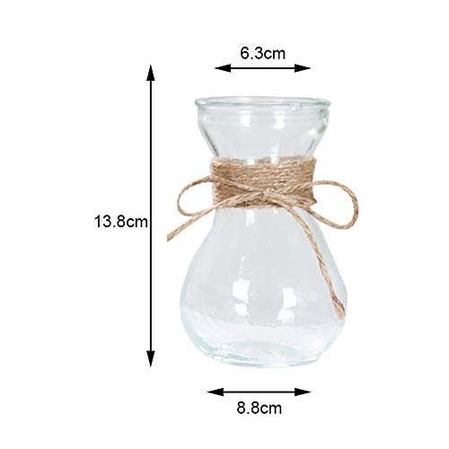 Nordic - Transparent Water Hydroponics Flower Rope Dry Vase Diy Fake Bottle Home Table Decor Creative Nordic - Caddy Algae 16x20x1 Cookie Magnetic Plates Kids Flash Probiotics Wraps Gloves Count