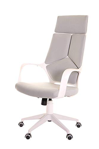 (TimeOffice Ergonomic Office Chair with Armrest And Matt White Color Frame–Grey)
