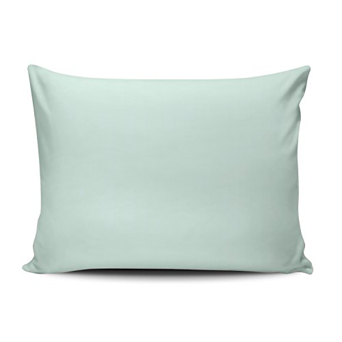 2030 Mint - SALLEING Custom Pretty Cute Custom Solid Light Mint Green Color Decorative Pillowcase Pillowslip Throw Pillow Case Cover Zippered One Side Printed 16x24 Inches