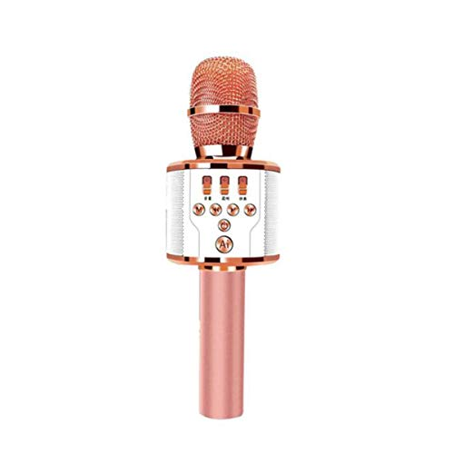 Chengjinxiang Karaoke, K Song Artifact Mobile Computer Live Wireless Bluetooth Sound Card, Microphone Audio One, Rose Gold Metal Dense mesh. (Color : Rose Gold)