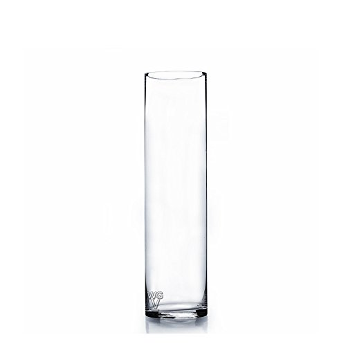 - WGV Clear Cylinder Glass Vase, 14-Inch