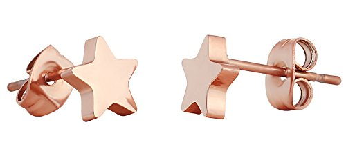 ELBLUVF Stainless Steel Women Crescent Moon and Star Lucky Stud Earrings Choose Colors (Rose gold star + star) - Lucky Rose Earrings