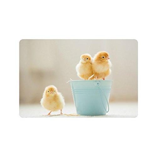 InterestPrint Cute Baby Chicks Yellow Little Chicken Doormat Non-Slip Indoor And Outdoor Door Mat Rug Home Decor, Entrance Rug Floor Mats Rubber Backing, 23.6