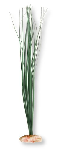 - Vibran-Sea Broad Leaf Marsh Grass Silk-Style Aquarium Plant, Medium 9-10 tall, Green