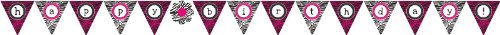 Pennant Banner, Pink Zebra Boutique Happy Birthday]()