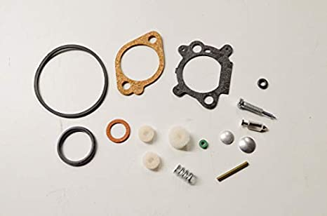 Amazon.com: Stens 520 – 516 Carburador Kit/Briggs y Stratton ...