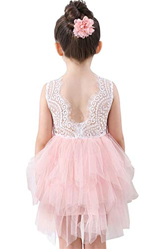 (Lace Back Flower Girl Dress,Kids Cute Backless Dress Embroidered Mesh Lace Applique Dress 3-10T(Pink, 1-2 Years))