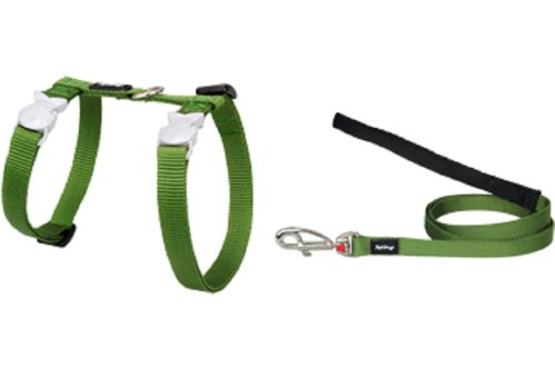 Red Dingo Classic Cat Harness and Lead Combo, Green ()