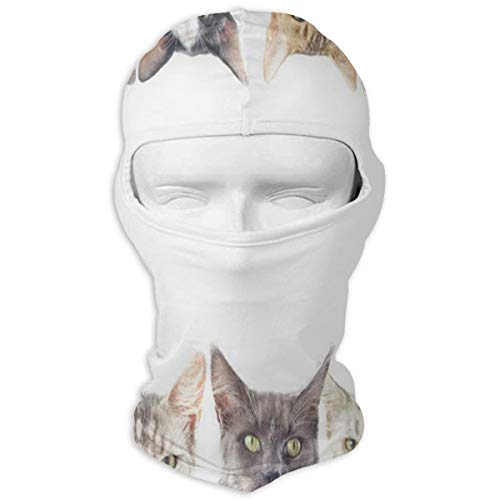 Balaclava Group Of Cats Full Face Masks UV Protection Ski Hat Womens Neck Warmer for Mountaineering
