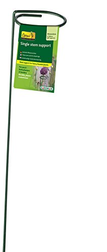 "Gardman R715 Single Stem Blossom Support, 24"" High with 2"" Loop"