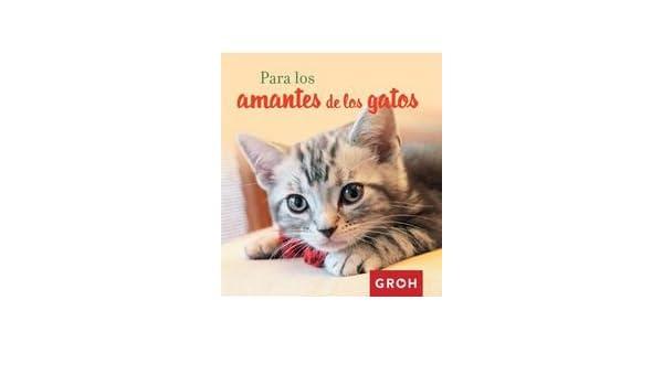 Para los amantes de los gatos: GROH VERLAG: 9788490680384: Amazon.com: Books
