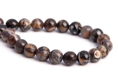 4mm Genuine Natural Coffee Brown Turritella Agate Round Loose Beads 7.5'' Crafting Key Chain Bracelet Necklace Jewelry Accessories Pendants ()