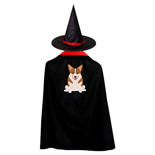 Halloween Children Costume Welsh Corgi Wizard Witch Cloak Cape Robe And Hat Set -