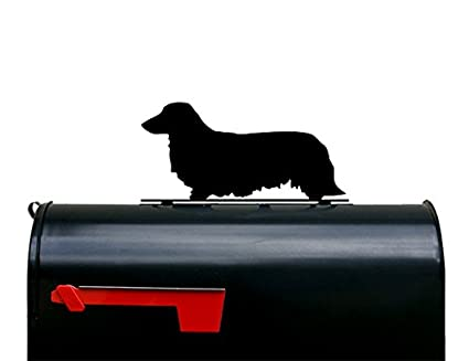 amazon com long haired dachshund mailbox topper sign home