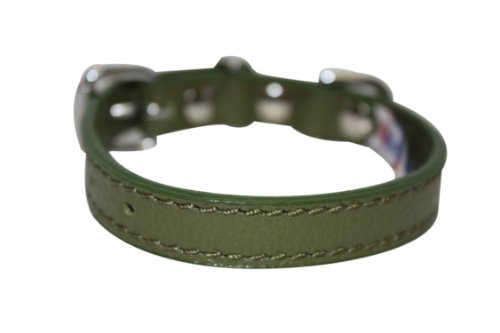 """Leather Dog Collar, Padded, 10"""" x 1/2"""", Green, Leather (A..."""