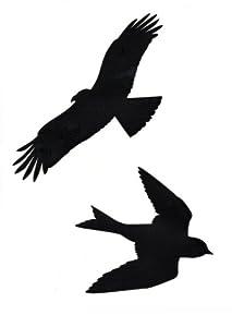 Bird Silhouette Window Stickers Amazoncouk Kitchen  Home - Window decals for birds canada
