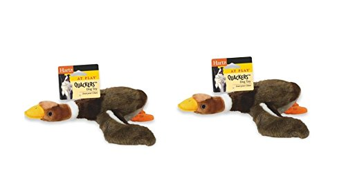 HARTZ Quackers Plush Duck Dog Toy, Colors Vary (2 Duck Dog Toy)