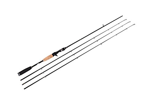 Heavy Custom Graphite Surf Rod - 5