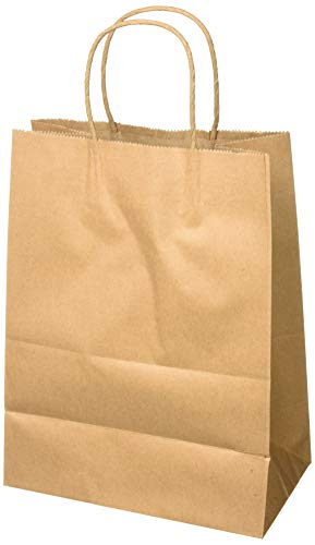 Natural Brown Paper Bag - 8