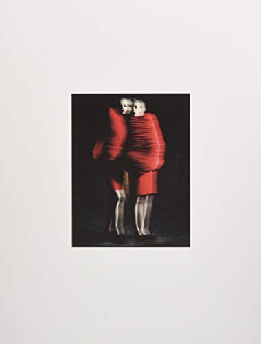 Rei Kawakubo/Comme des Garçons: Art of the ()