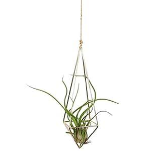 Maceta colgante, Axier jarrón geométrico decoración de la pared comida–ideal para plantas suculentas, Air Plant, Mini Cactus, plantas y más, Blanco Cerámica