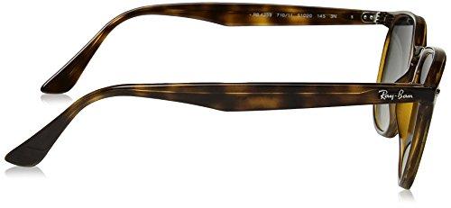 RB Sonnenbrille 4259 Ban Ray Havana wOq8A