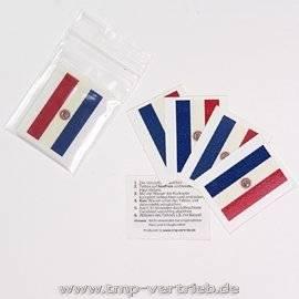 10 x conjunto de banderas de Paraguay tatuaje temporal - Word Cup 2018 (10)