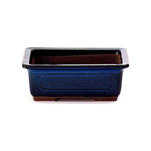 Blu Crespi Bonsai V022//1 Vaso per Bonsai 20x14x6.3 cm