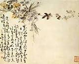The Eccentric Painters of Yangzhou, Vito Giacalone and Ginger Cheng-chi Hsu, 0295970871