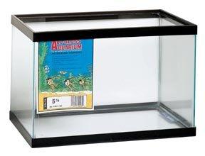 Frameless All-glass Aquarium Tanks; 20 gallons