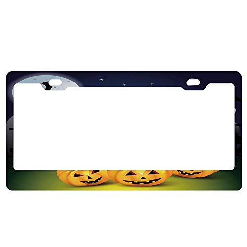 SportsFloraling Halloween,Funny Cartoon Design with Pumpkins Witches Hat Ghosts Graveyard Full Moon Cat,Multicolor Car License Plate Frame Tag Aluminum Metal Auto Accessory for US Standard ()