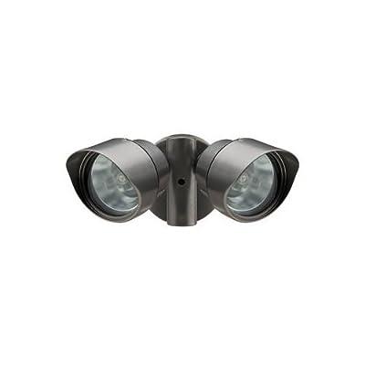 Lithonia Designer Adjustable Twin Head Flood Light Quartz Halogen