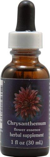 Flower Essence FES Quintessentials Chrysanthemum Supplement Dropper -- 1 fl oz