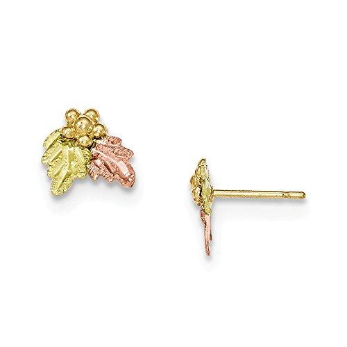 10k Tri-Color Gold Black Hills Gold Grapevine Stud Earrings