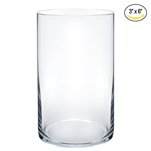Royal Imports Flower Glass Vase Decorative Centerpiece For Home or Wedding by Cylinder Shape, 6