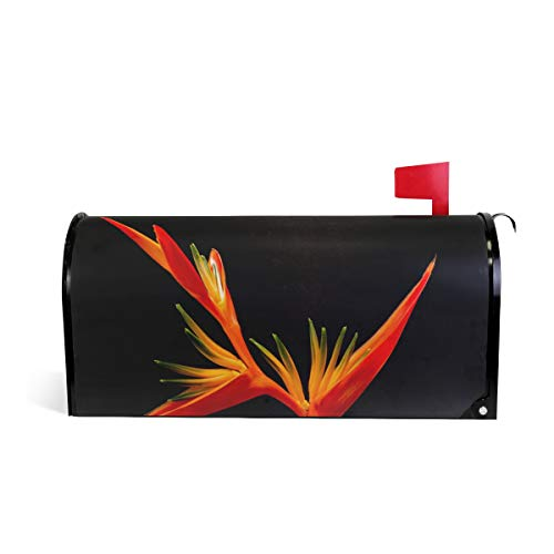 Fengye Mailbox Magnetic Cover Red Birds of Paradise Medium Large Capacity Post Box Covers 25.5 x 20.8 inch Oversized Bird Of Paradise Cover