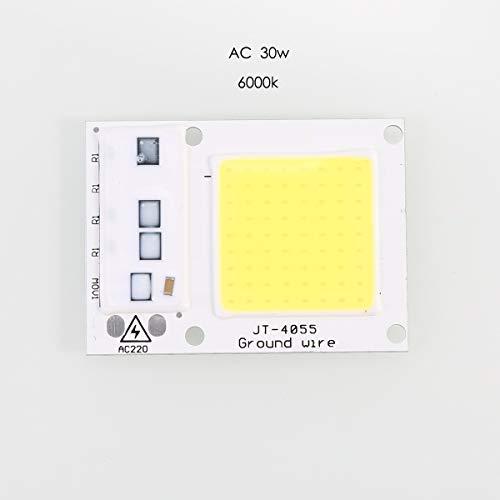 LED COB Lamp Chip AC 50W | 30W | 20W 220V Input Smart IC Driver Fit for DIY LED Floodlight Spotlight Cold Warm White (Color : White Ligh-50W)