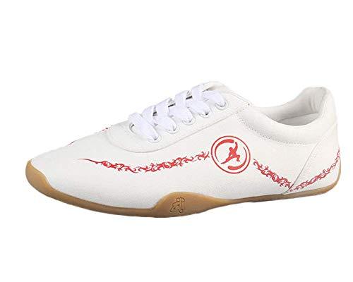 Unisex Adults Breathable Comfort Chinese Tai-Chi Wu Shu Kung Fu Shoes Basic Style for Daily Training Morning Exercises White 41