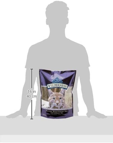 Blue Buffalo Wilderness High Protein Grain Free, Natural Adult Dry Cat Food, Chicken 9