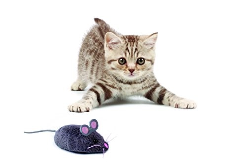 Buy electronic cat toys