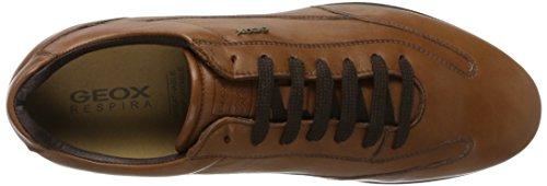 Geox Herren U Clemet A Sneaker Braun (browncotto)