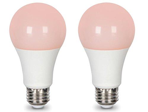 Lighting Science LS A19 60WE SLP 120 G1 BX Good Night LED Household Light Bulbs (2) - Ls Led