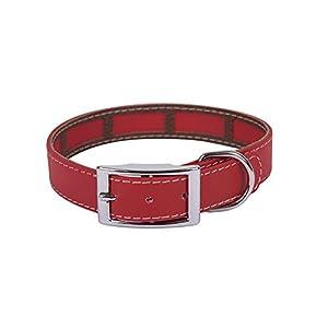 Francisco Romero – Collar con Funda Antiparasitaria Biothane Beta, 2.5 x 50 cm, Rojo