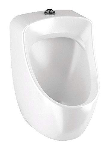 Washdown Wall Urinal, 1.0 Gallons per Flush, 23-1/2'H x 14-3/16'W, White