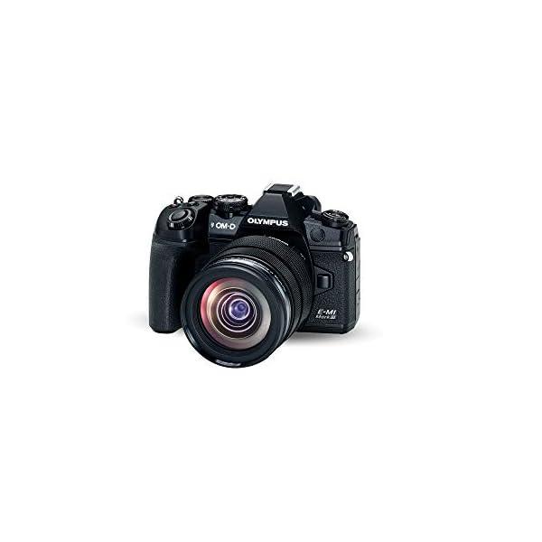 RetinaPix Olympus OM-D E-M1 Mark III Micro Four Thirds System Camera Kit (20 Megapixel Sensor, 5-Axis Image Stabilisation, 4K Video, Wi-Fi, Bluetooth) + M.Zuiko Digital ED 12-40 mm f2.8 PRO Lens, Black