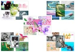 set of 20 new postcards; The Postcard Store Mixed 1 postcards for competitions